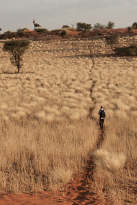 InfoMap_Namibia_Botswana_2016_bagatelle_walk