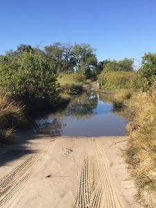 infomap_namibia_botswana_2016_moremi_third_bridge_water