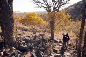 infomap_namibia_botswana_2016_tsodilo_walk
