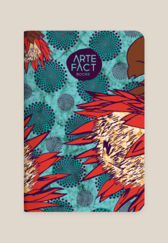 ARTEFACT-BOOKS_Neo-Iconic_Candy-red-turquoise_978-1-920566-13-5_Infomap-background